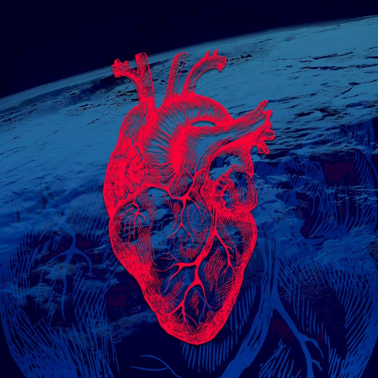 What Happens To Your Heart In Space And What Is The Heart Rate In Space?